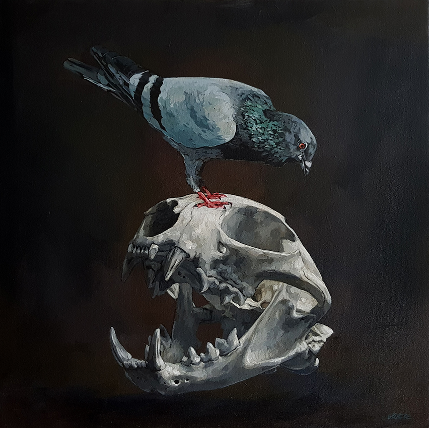 Grace_Kotze_The_Pigeon_and_the_Puma_Scull_80_x_80_x_4cm_Acrylic_on_Canvas_2017_net
