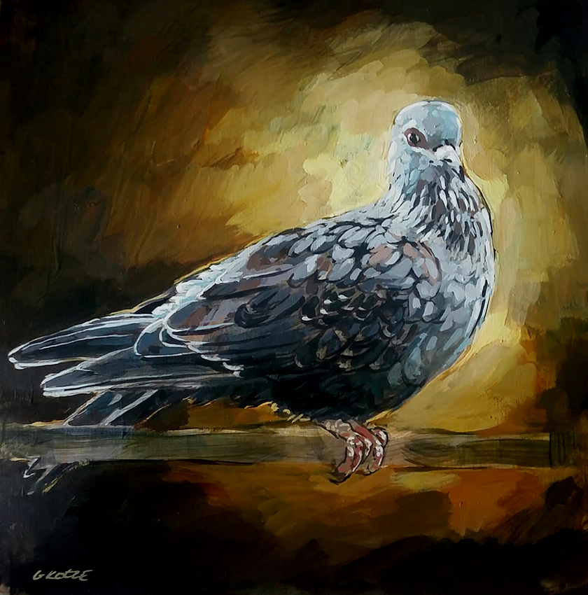 Speckled_Pigeon_35_x_35_x_4cm_Accrylic_on_board